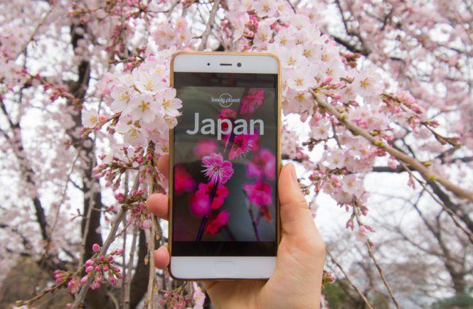 Zero Waste Tips Japan