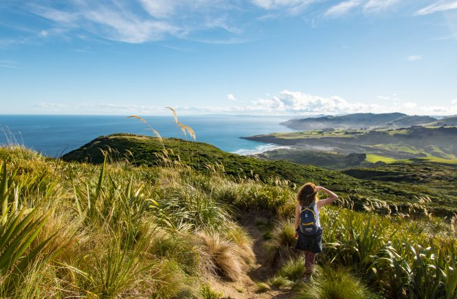 Otago Peninsula Hiking