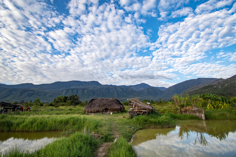 Baliem Valley Hiking